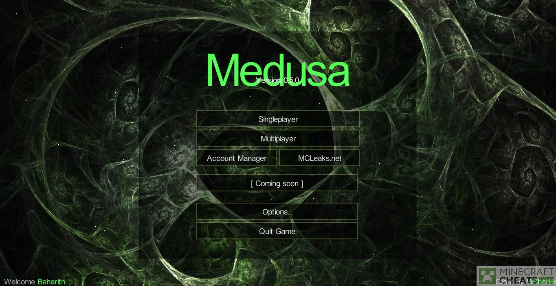 Главное меню в чите Medusa